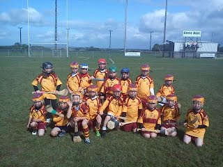 U8 team Knockroghery fair 2011