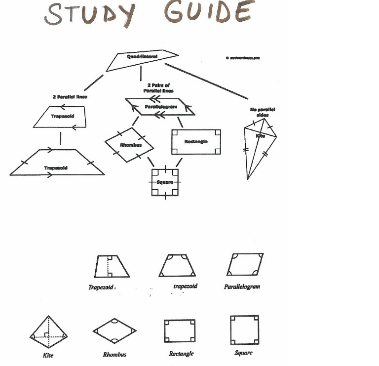 Create Study Guide Online | QuizMEOnline