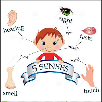 sensory writing What are sensory words and how can you use them this quick tutorial  includes a list with examples of sensory phrases for business writing.