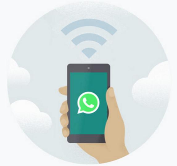 https://api.whatsapp.com/send?phone=31622869860
