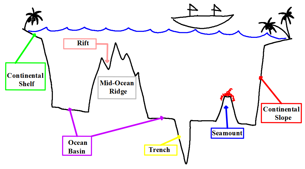 Ocean Floor Diagram 5th Grade