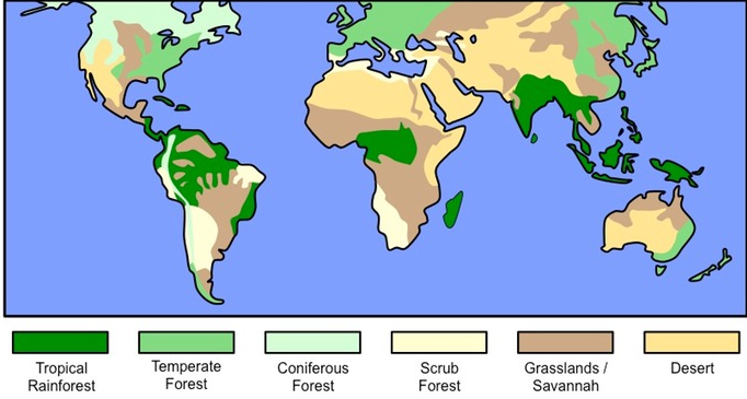 major biomes of the world images