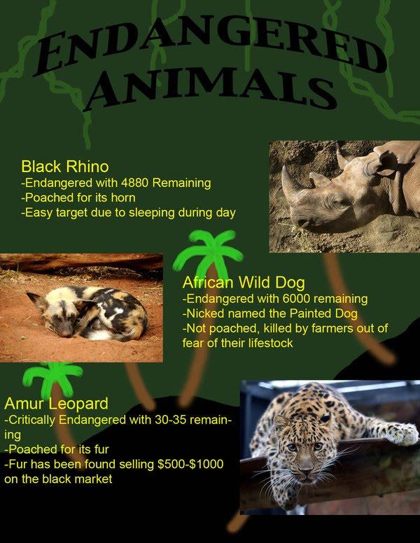 Preventing animal endangerment