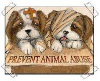 Animal Cruelty - Animal Realm