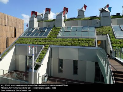 https://sites.google.com/a/gsbi.org/gvc1416/green-roof-technology/green%20roof2.jpg