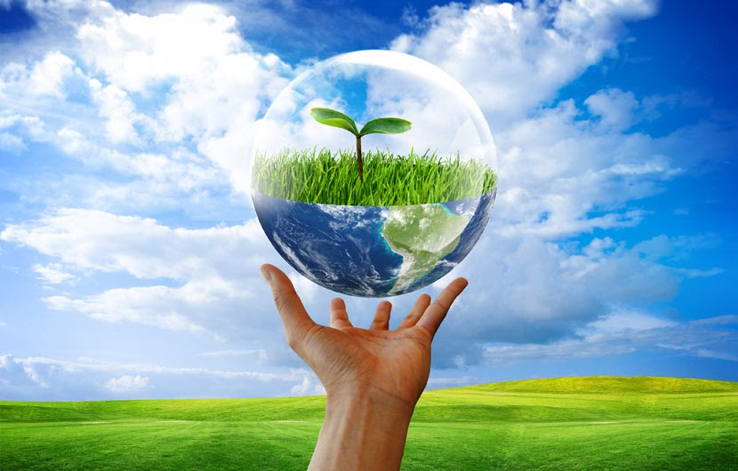 our environment A secondary school revision resource for ocr gcse science about  understanding our environment.
