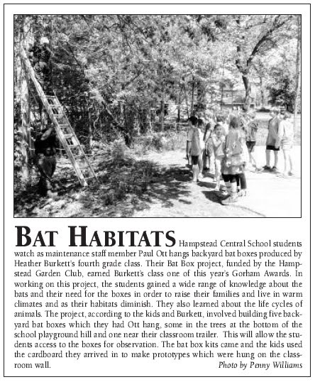 Photo of news article: Bat Habitats: Hampstead Central School students watch as maintenance staff member Paul Ott hangs backyard bat boxes produced by Heather Burkett's fourth grade class. Their Bat Box project, funded by the Hampstead Garden Club, earned Burkett's class one of this year's Gorham Awards. In working on this project, the students gained a wide range of knowledge about the bats and their need for the boxes in order to raise their families and live in warm climates and as their habitats diminish. They also learned about the life cycles of animals. The project, according to the kids and Burkett, involved building five backyard bat boxes which they had Ott hang, some in the trees at the bottom of the school playground hill and one near their classroom trailer. this will allw the studnets access to the boxes for observation. The bat box kits came and the kids used the cardboard they arrived in to make prototypes which were hung on the classroom wall. Photo by Penny Williams.