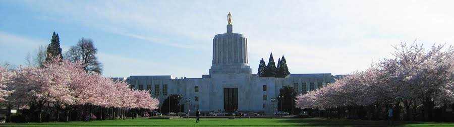 Oregon State Capitol. Original photo by M.O. Stevens.