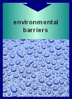 environmental barrier coatings