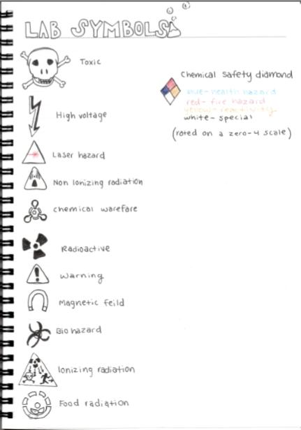 10th Grade Chemistry Sophie Williams Digital Portfolio
