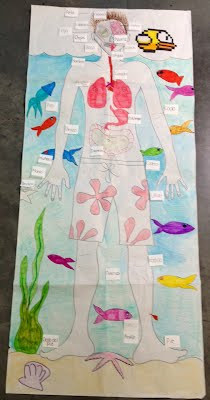 a body diagram and labeled the body parts in spanish  as a group, we  decided to create label flaps where the spanish word was on top and the  english