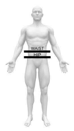 How to measure your waist to hip ratio