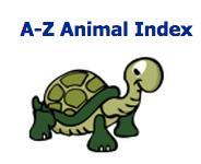 http://a-z-animals.com/animals/