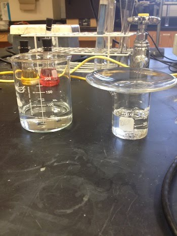 Beakers with clear liquids: HCl and NaOH. The NaOH is covered.