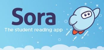 www.soraapp.com