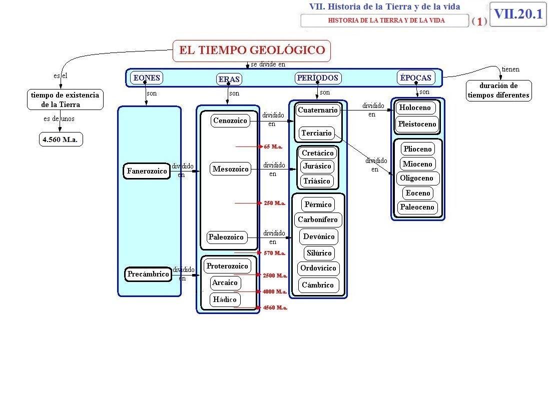 shop planung und steuerung von input output systemen