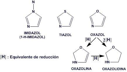 metabolismo de la glucosa prednisona en diabetes