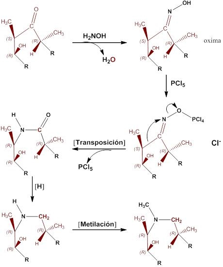 Azitromicina Sintesis Quimica Mecanismo De Accion Farmacocinetica Info Farmacia