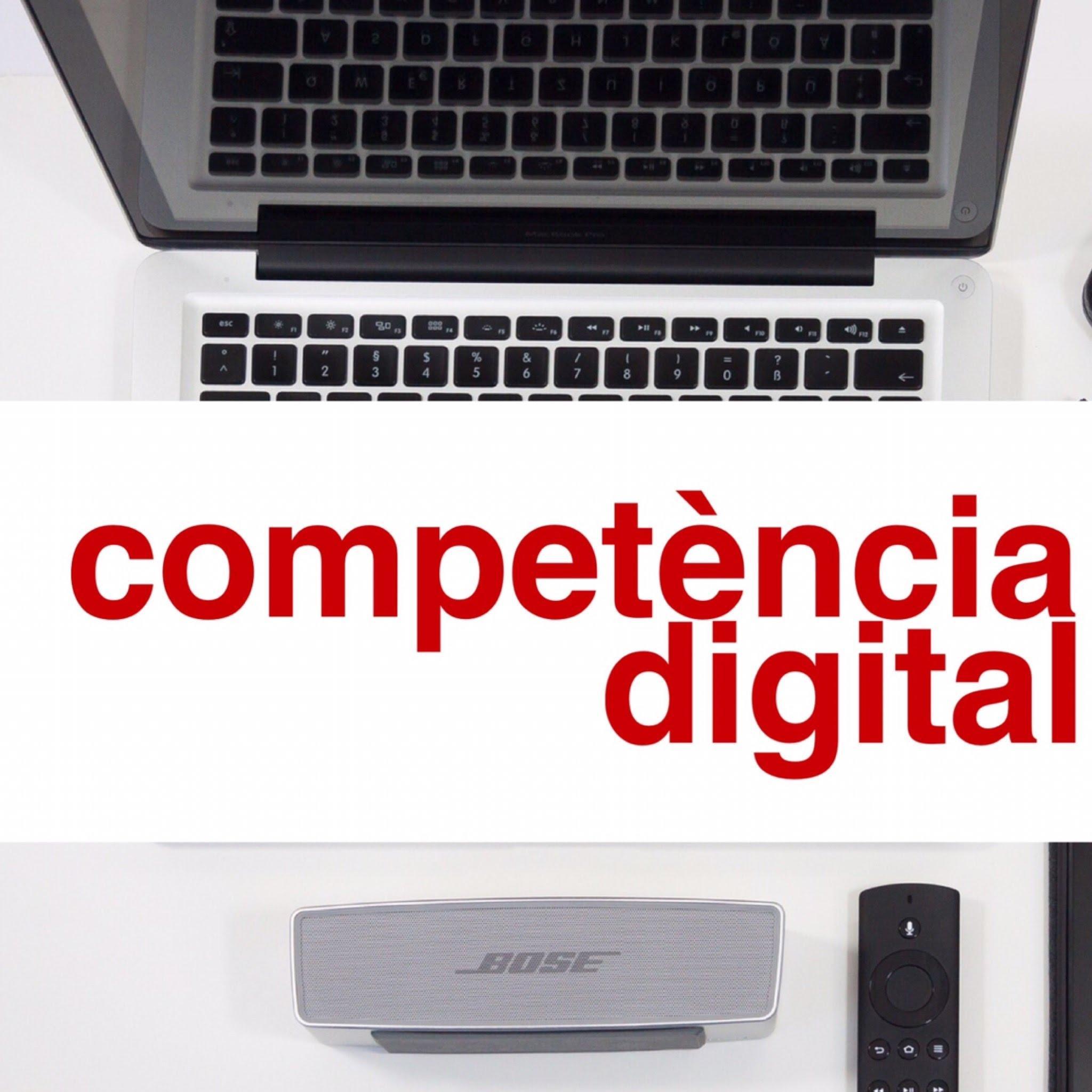 4 àmbits → 12 competències