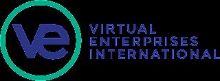 VEI Website