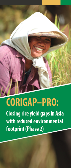 CORIGAP brochure