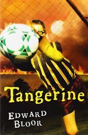 Image result for tangerine novel unit