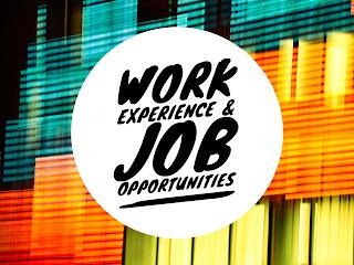 Work Experience & Job Opportunities