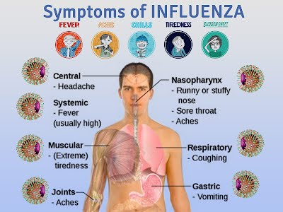 what are the signs and symptoms of flu ayelomi12b2106s2