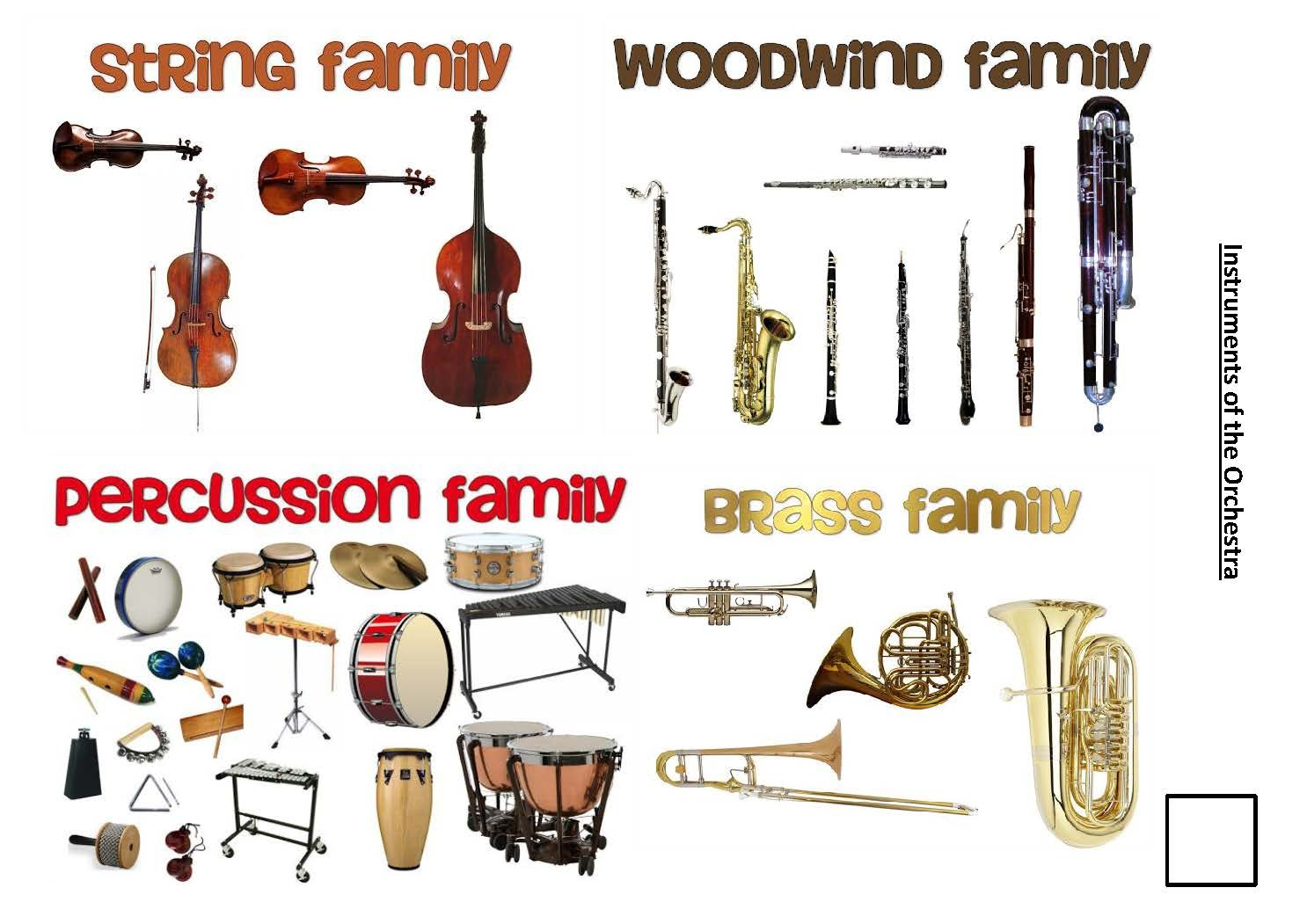 Various Orchestral Music Instruments