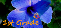https://sites.google.com/a/jeffcoschools.us/meiklejohn-elementary-library/class-projects/1st-grade-projects