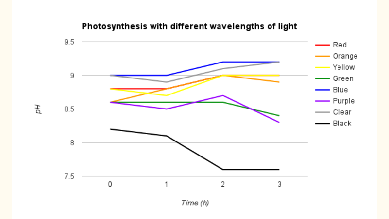 hypothesis wavelength of light and photosynthesis The light's wavelength energy, similarity to the dominant pigment, and how much each pigment is devoted to each color are all factors in determining how efficient light is in photosynthesis based on the data.