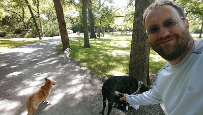 dog walkers in dallas