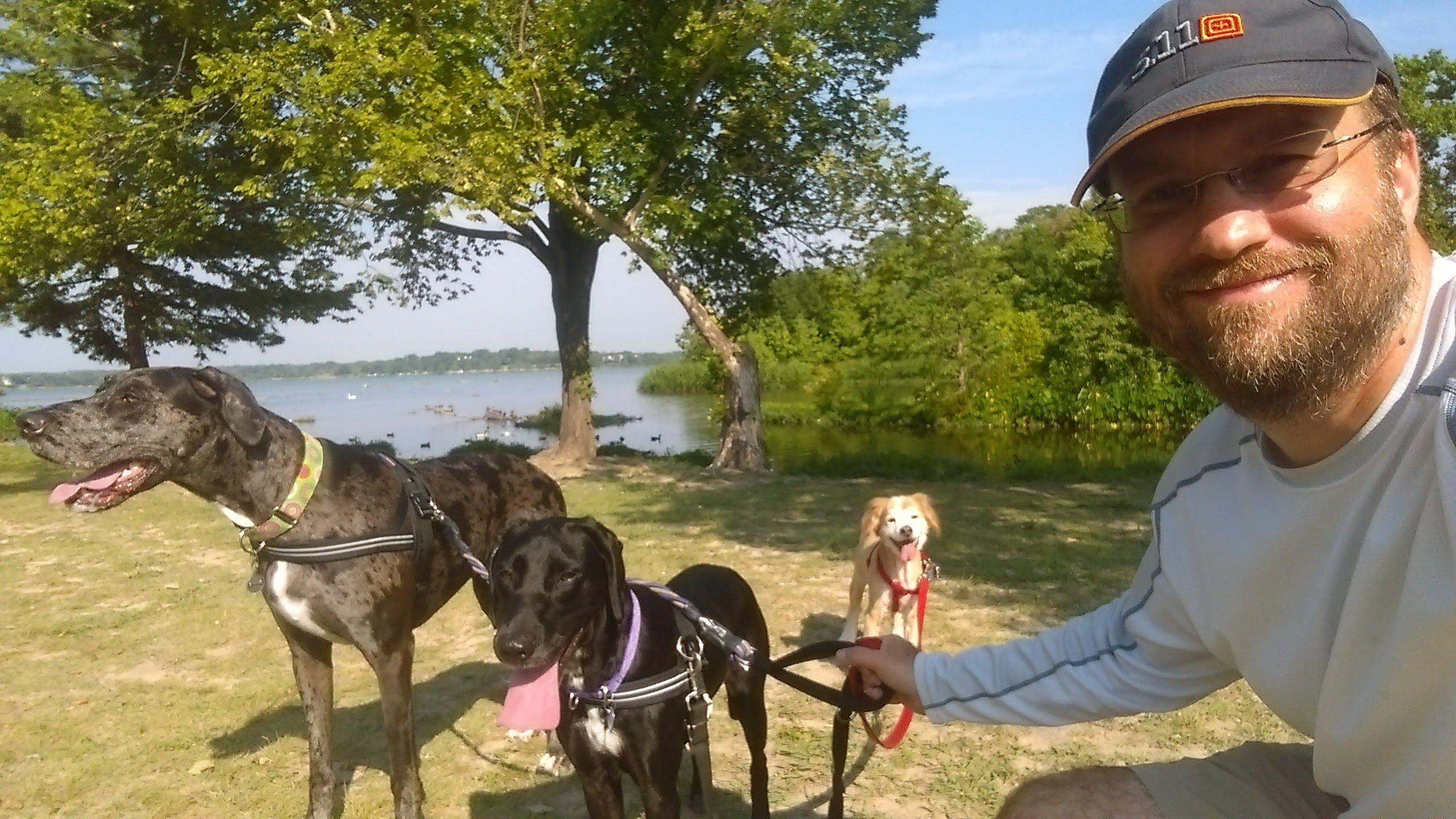 dog walking at white rock lake in east dallas