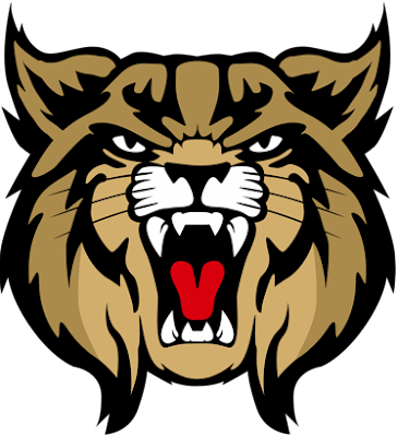 Brookings High School logo
