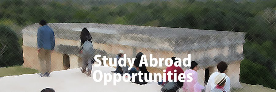 http://www.jp.lainac.c.u-tokyo.ac.jp/students/studyabroad/opportunities