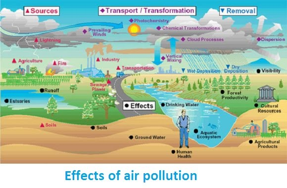 air pollution a significant cause of Air quality, air pollution natural sources can sometimes be significant but do wind can move air pollutants short or very long distances before they cause.
