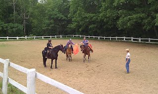 Horse Certification Day