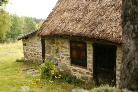 chambre d'hôtes Les Trefles en auvergne dans le puy de dôme : toit de chaume
