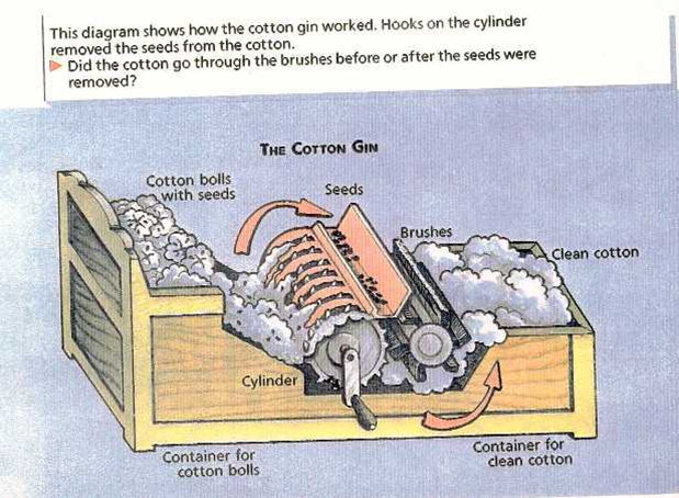 3 The Cotton Gin Inventions That Changed America The
