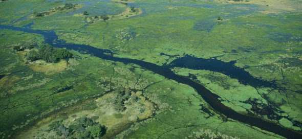 okavango delta botswana physical geography global parks summer