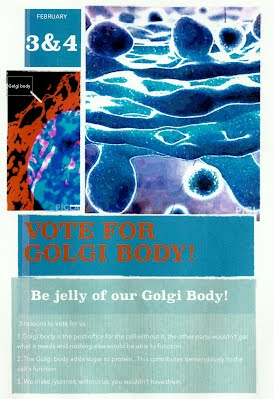 golgi body cell organelle campaign 2014