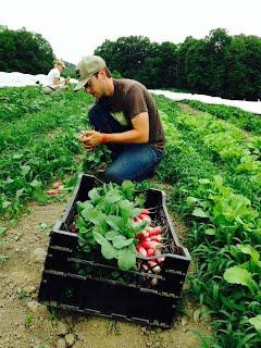Mighty Food Farm