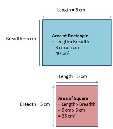 b) Area and Perimeter - P4-1 Maths & Science