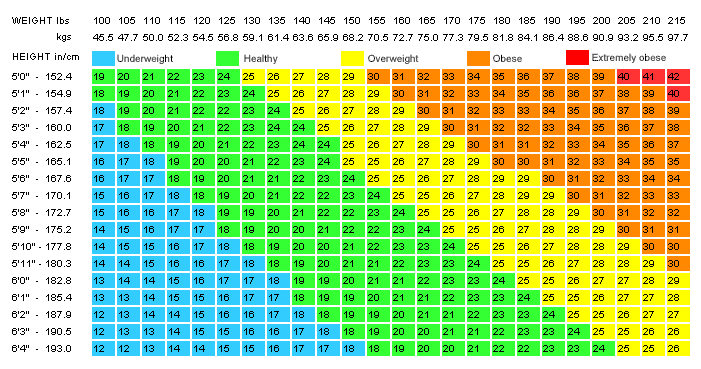 bmi chart: Body mass index bmi and fitnessgram charts ignacio s physical