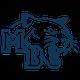 Athletics Icon