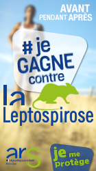 http://www.ars.martinique.sante.fr/La-leptospirose.140271.0.html