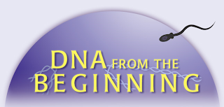 DNA from the Beginning Logo
