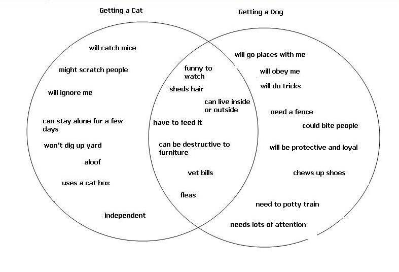 Venn Diagram Life Dog Or Life Cat