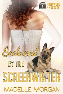 Upscale Luxury Dog Grooming Spa Hollywood California