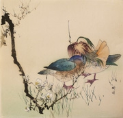 Ducks with Flowering Plum
